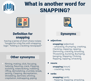 snapping, synonym snapping, another word for snapping, words like snapping, thesaurus snapping