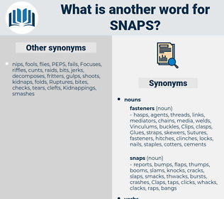 snaps, synonym snaps, another word for snaps, words like snaps, thesaurus snaps