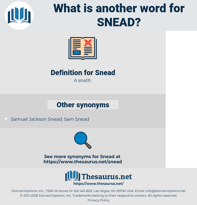Snead, synonym Snead, another word for Snead, words like Snead, thesaurus Snead