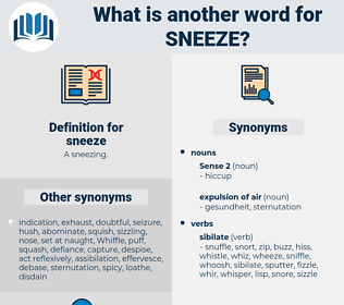 sneeze, synonym sneeze, another word for sneeze, words like sneeze, thesaurus sneeze
