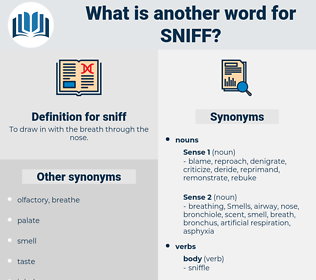 sniff, synonym sniff, another word for sniff, words like sniff, thesaurus sniff