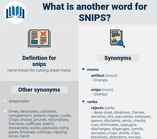 snips, synonym snips, another word for snips, words like snips, thesaurus snips