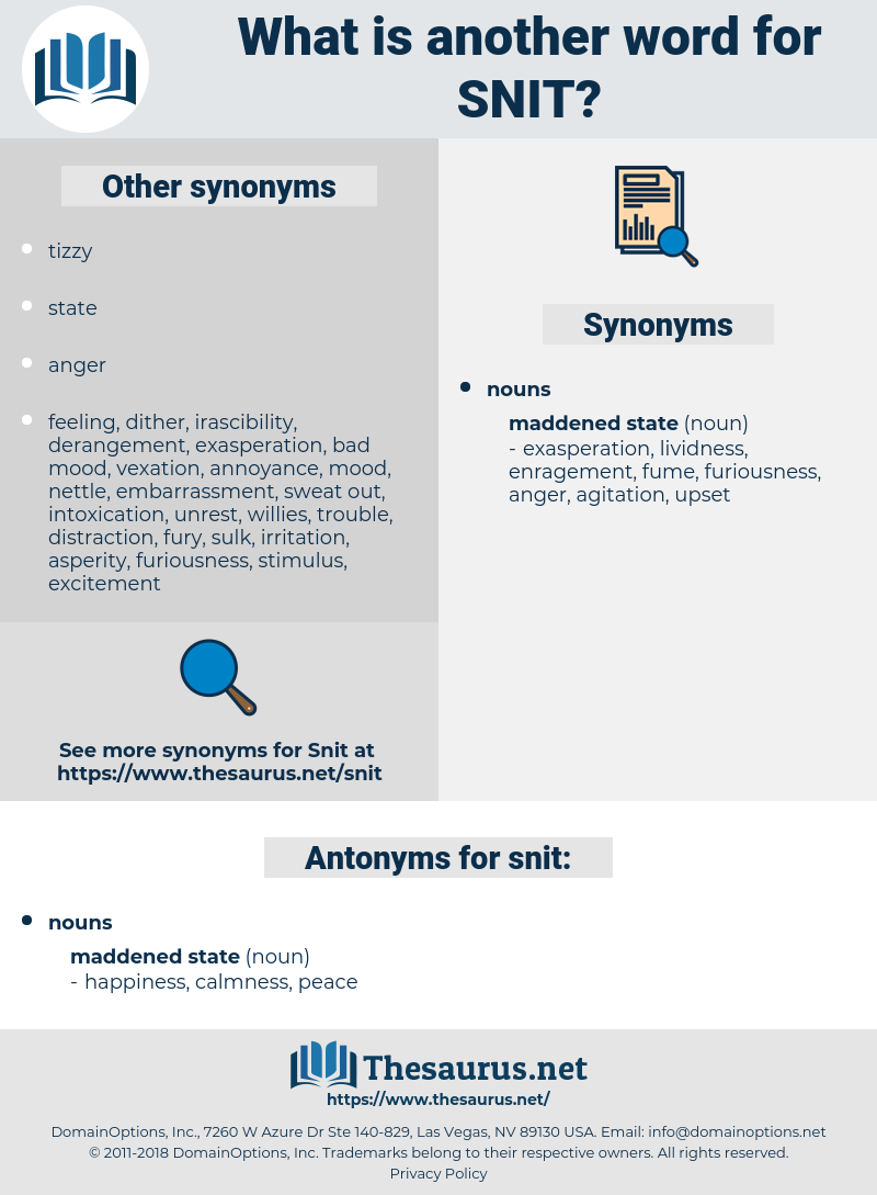 snit, synonym snit, another word for snit, words like snit, thesaurus snit