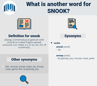 snook, synonym snook, another word for snook, words like snook, thesaurus snook