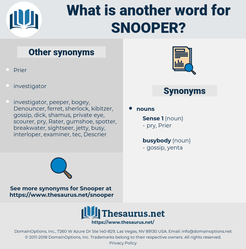 snooper, synonym snooper, another word for snooper, words like snooper, thesaurus snooper