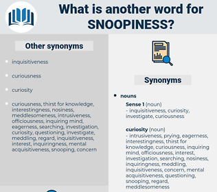snoopiness, synonym snoopiness, another word for snoopiness, words like snoopiness, thesaurus snoopiness