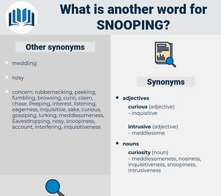 snooping, synonym snooping, another word for snooping, words like snooping, thesaurus snooping
