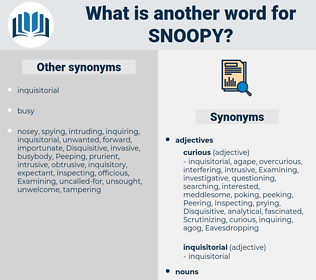 snoopy, synonym snoopy, another word for snoopy, words like snoopy, thesaurus snoopy