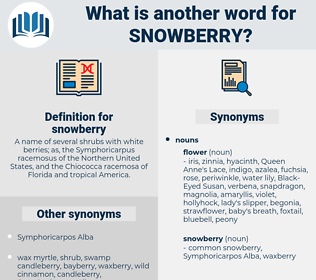 snowberry, synonym snowberry, another word for snowberry, words like snowberry, thesaurus snowberry