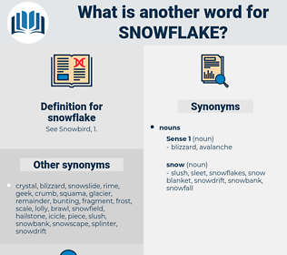 snowflake, synonym snowflake, another word for snowflake, words like snowflake, thesaurus snowflake