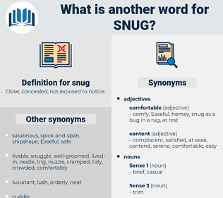 snug, synonym snug, another word for snug, words like snug, thesaurus snug