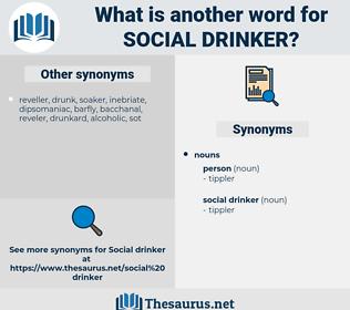 social drinker, synonym social drinker, another word for social drinker, words like social drinker, thesaurus social drinker