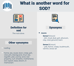 sod, synonym sod, another word for sod, words like sod, thesaurus sod