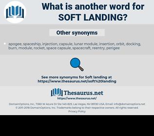 soft landing, synonym soft landing, another word for soft landing, words like soft landing, thesaurus soft landing
