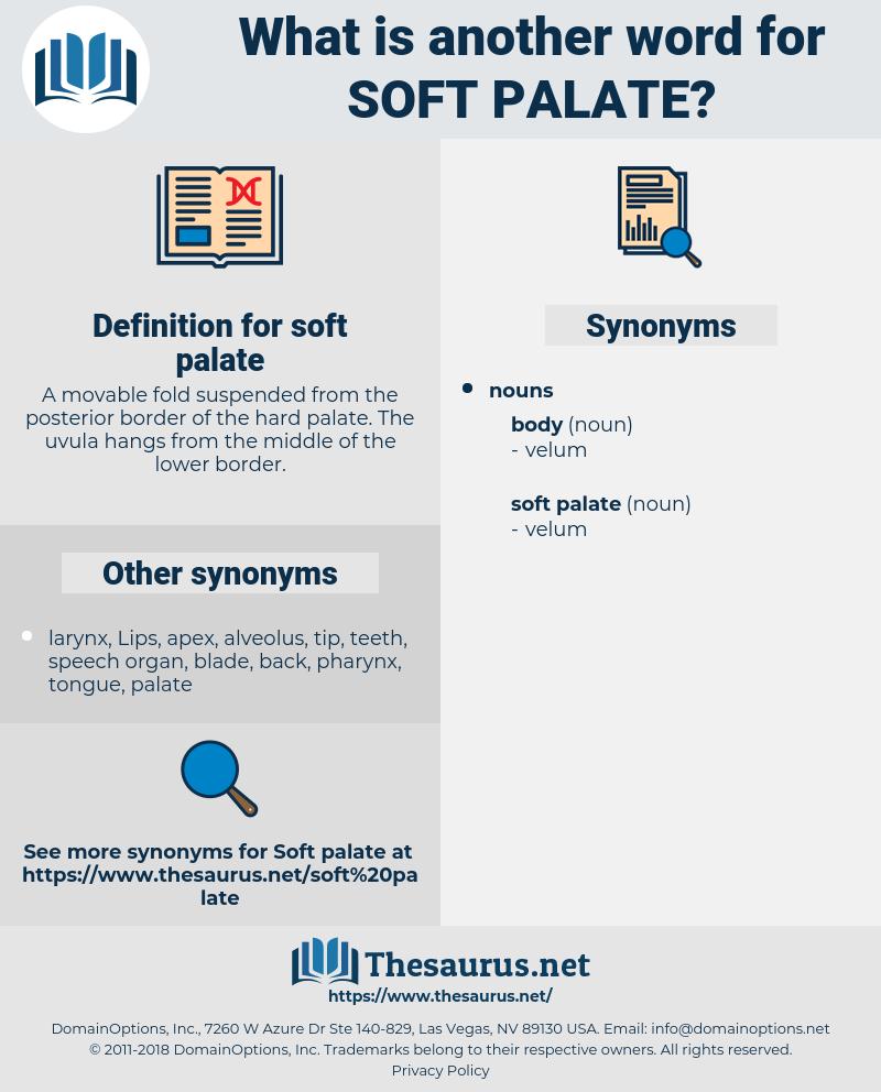 soft palate, synonym soft palate, another word for soft palate, words like soft palate, thesaurus soft palate