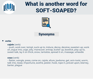 soft soaped, synonym soft soaped, another word for soft soaped, words like soft soaped, thesaurus soft soaped