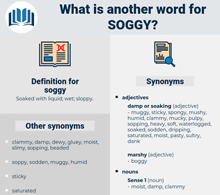 soggy, synonym soggy, another word for soggy, words like soggy, thesaurus soggy