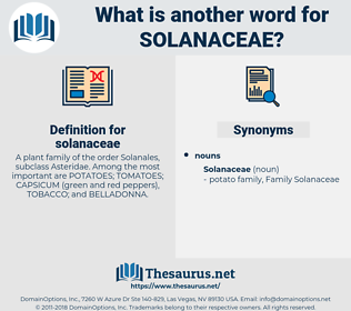solanaceae, synonym solanaceae, another word for solanaceae, words like solanaceae, thesaurus solanaceae
