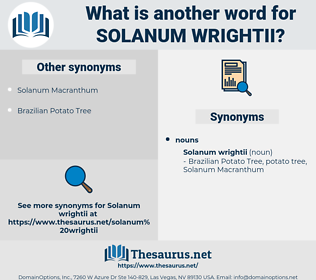 Solanum Wrightii, synonym Solanum Wrightii, another word for Solanum Wrightii, words like Solanum Wrightii, thesaurus Solanum Wrightii