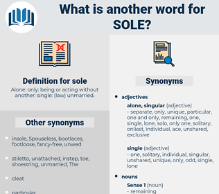sole, synonym sole, another word for sole, words like sole, thesaurus sole