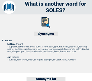 soles, synonym soles, another word for soles, words like soles, thesaurus soles