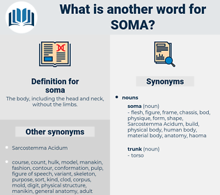 soma, synonym soma, another word for soma, words like soma, thesaurus soma