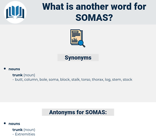 SOMAS, synonym SOMAS, another word for SOMAS, words like SOMAS, thesaurus SOMAS