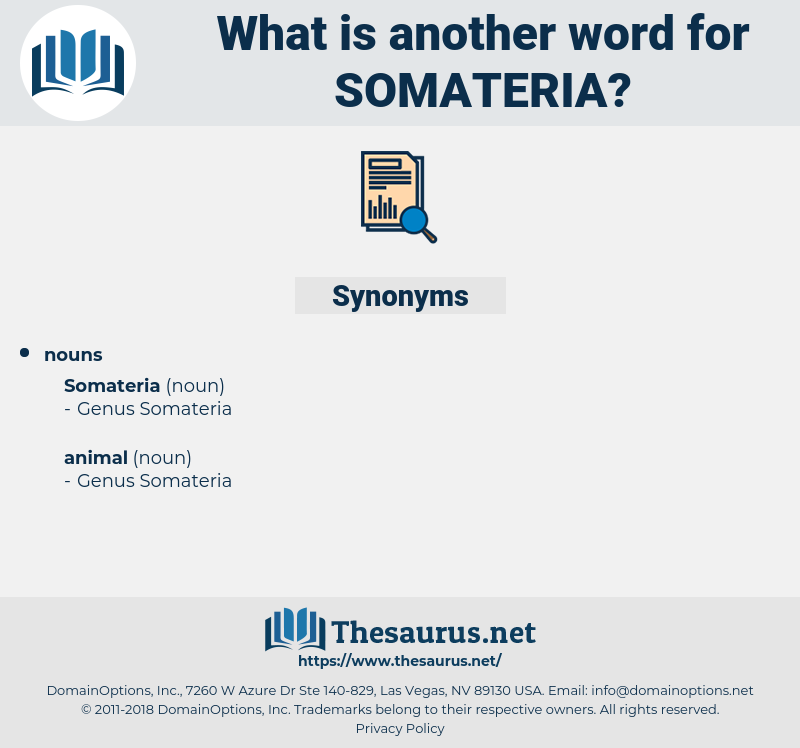 somateria, synonym somateria, another word for somateria, words like somateria, thesaurus somateria