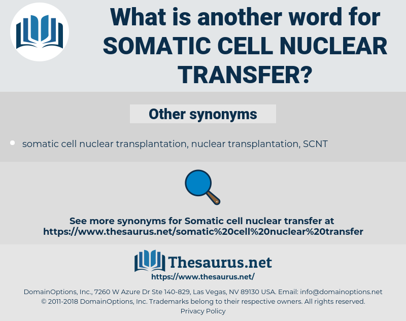somatic cell nuclear transfer, synonym somatic cell nuclear transfer, another word for somatic cell nuclear transfer, words like somatic cell nuclear transfer, thesaurus somatic cell nuclear transfer