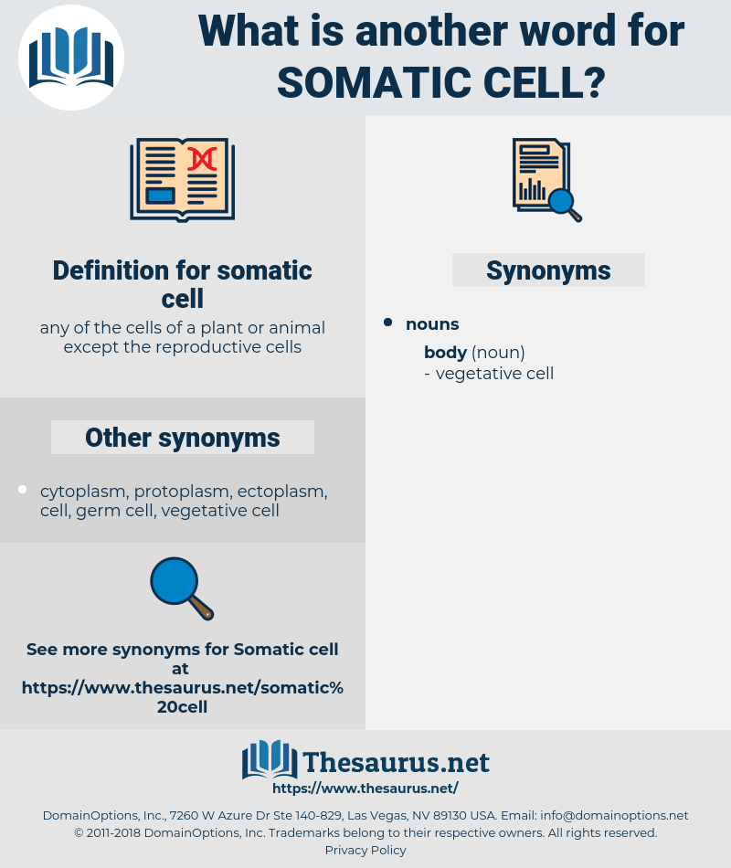 somatic cell, synonym somatic cell, another word for somatic cell, words like somatic cell, thesaurus somatic cell