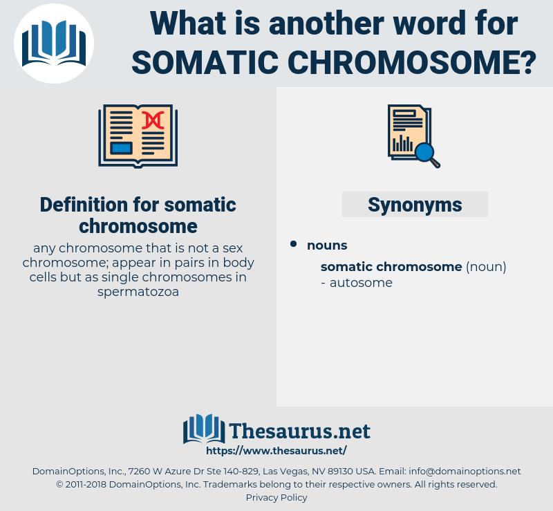 somatic chromosome, synonym somatic chromosome, another word for somatic chromosome, words like somatic chromosome, thesaurus somatic chromosome