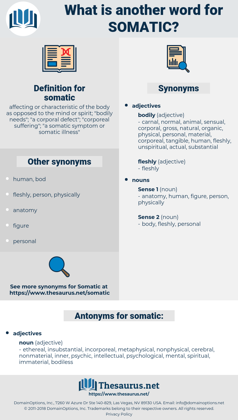somatic, synonym somatic, another word for somatic, words like somatic, thesaurus somatic