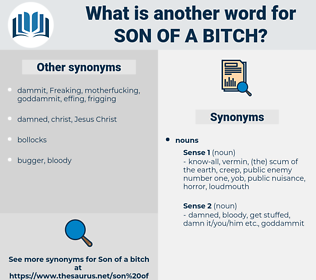 son of a bitch, synonym son of a bitch, another word for son of a bitch, words like son of a bitch, thesaurus son of a bitch