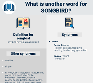 songbird, synonym songbird, another word for songbird, words like songbird, thesaurus songbird