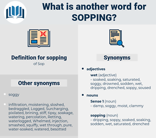 sopping, synonym sopping, another word for sopping, words like sopping, thesaurus sopping