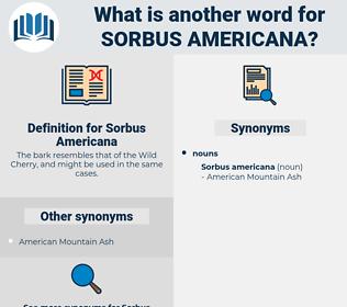 Sorbus Americana, synonym Sorbus Americana, another word for Sorbus Americana, words like Sorbus Americana, thesaurus Sorbus Americana