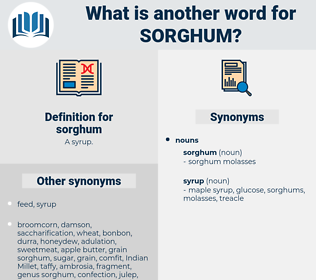 sorghum, synonym sorghum, another word for sorghum, words like sorghum, thesaurus sorghum