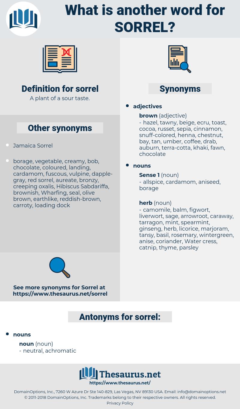 sorrel, synonym sorrel, another word for sorrel, words like sorrel, thesaurus sorrel
