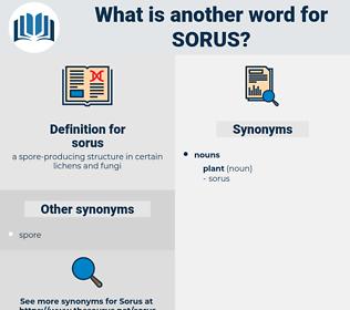 sorus, synonym sorus, another word for sorus, words like sorus, thesaurus sorus