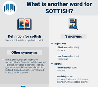 sottish, synonym sottish, another word for sottish, words like sottish, thesaurus sottish
