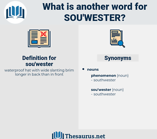 sou'wester, synonym sou'wester, another word for sou'wester, words like sou'wester, thesaurus sou'wester