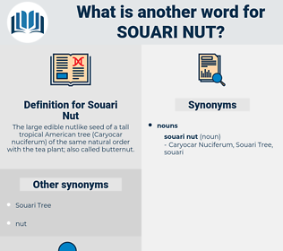 Souari Nut, synonym Souari Nut, another word for Souari Nut, words like Souari Nut, thesaurus Souari Nut