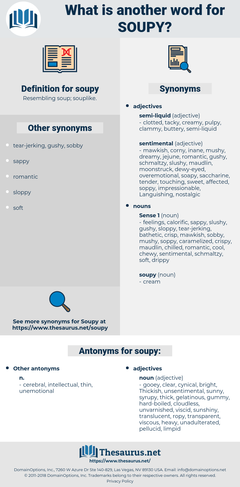 soupy, synonym soupy, another word for soupy, words like soupy, thesaurus soupy