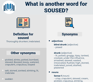soused, synonym soused, another word for soused, words like soused, thesaurus soused