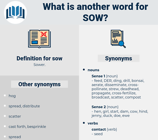 sow, synonym sow, another word for sow, words like sow, thesaurus sow