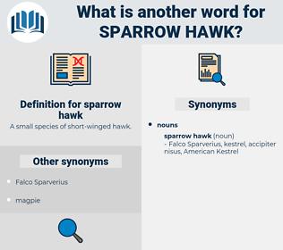 sparrow hawk, synonym sparrow hawk, another word for sparrow hawk, words like sparrow hawk, thesaurus sparrow hawk
