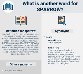 sparrow, synonym sparrow, another word for sparrow, words like sparrow, thesaurus sparrow