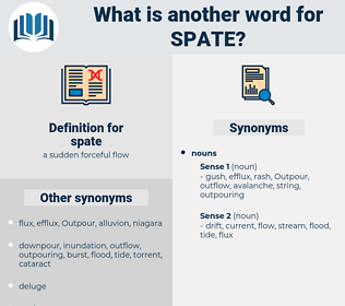 spate, synonym spate, another word for spate, words like spate, thesaurus spate