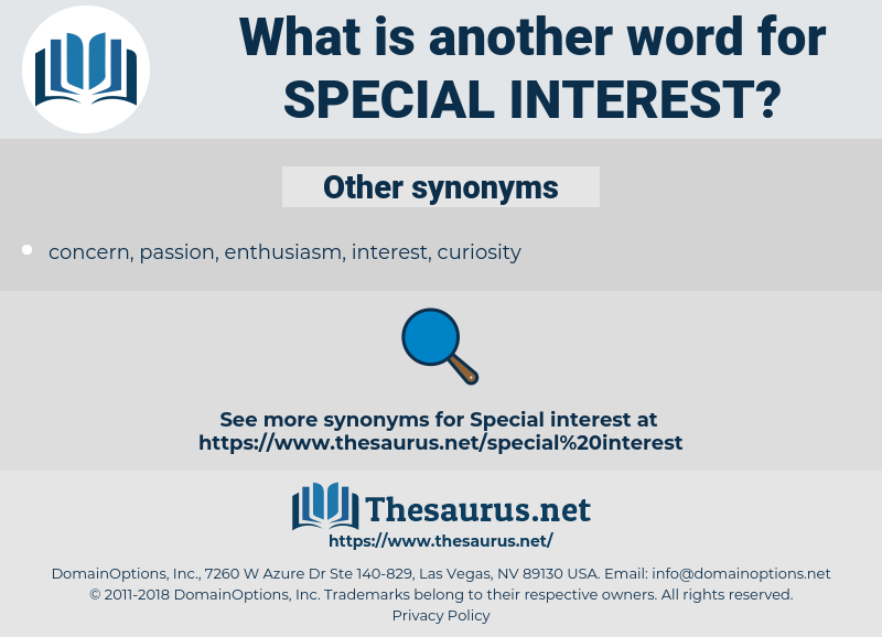 special interest, synonym special interest, another word for special interest, words like special interest, thesaurus special interest