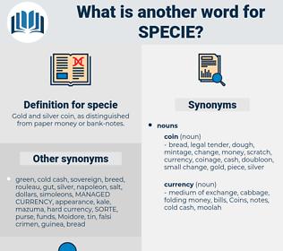 specie, synonym specie, another word for specie, words like specie, thesaurus specie